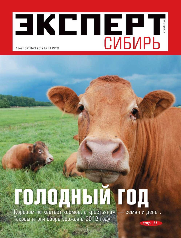 Эксперт Сибирь 41-2012