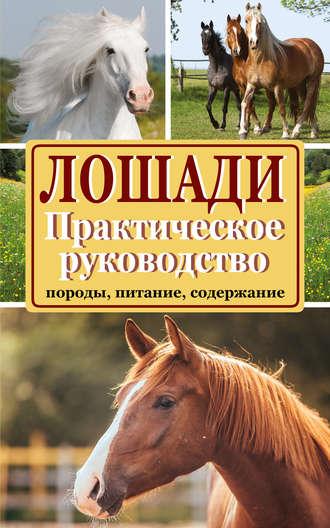 Купить Лошади. Породы, питание, содержание. Практическое руководство – Марина Голубева 978-5-17-088528-2