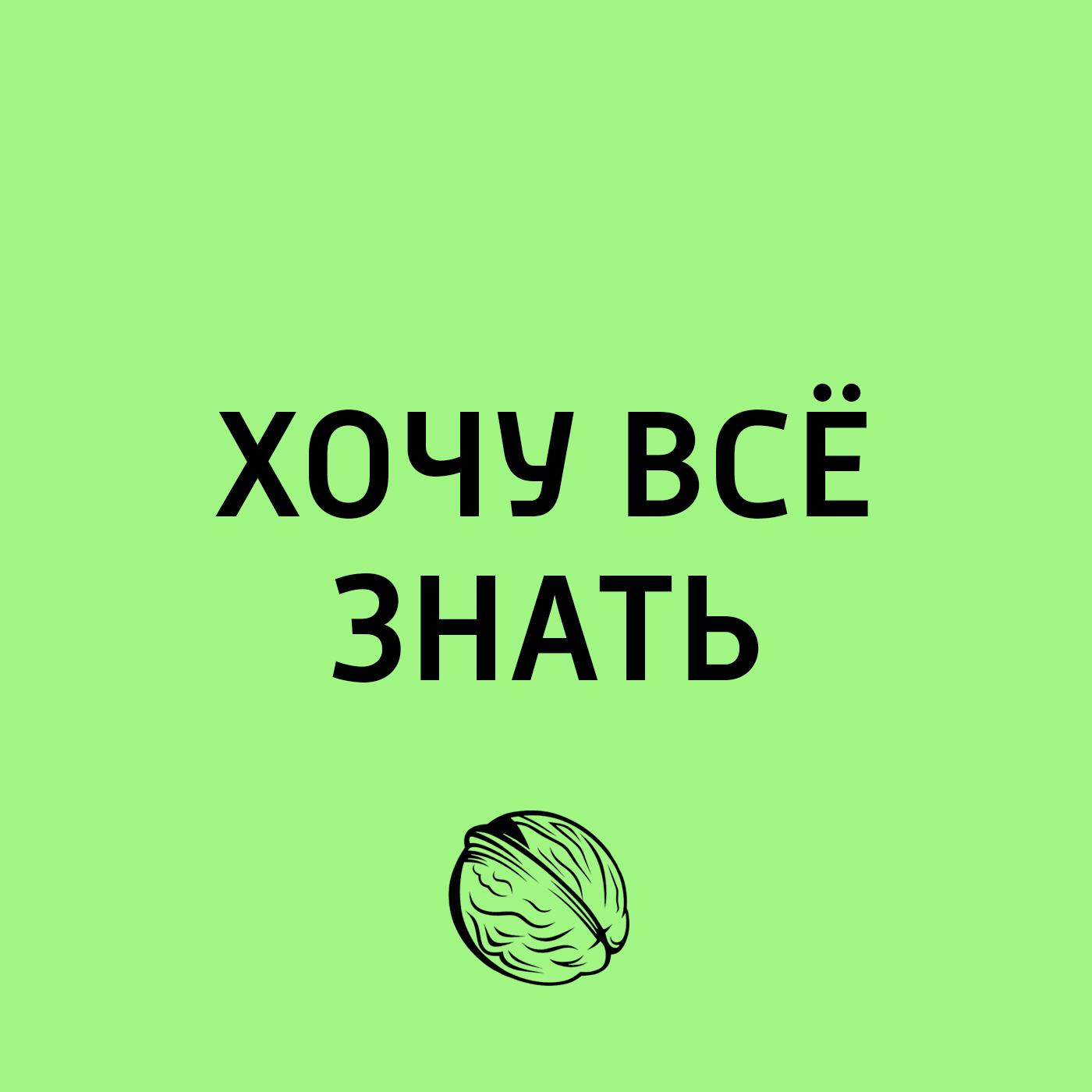Мир Древней Руси. Как жили наши предки. Дерево - всему глава