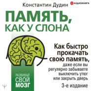Память, как у слона. Как быстро прокачать свою память, даже если вы регулярно забываете выключить утюг или закрыть дверь