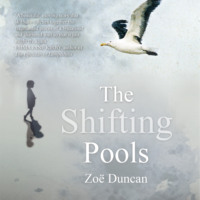 The Shifting Pools (Unabridged)