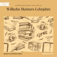 Wilhelm Meisters Lehrjahre (Ungekürzt)