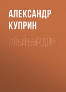 Илья Бырдин