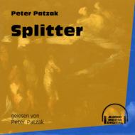 Splitter (Ungekürzt)
