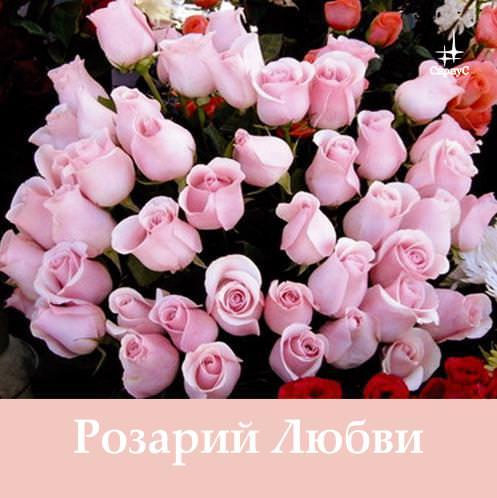 Татьяна Микушина Розарий Любви татьяна микушина розарий милости матери марии