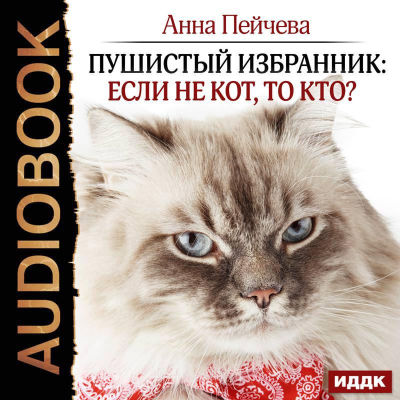 Анна Пейчева Пушистый избранник: если некот, токто?
