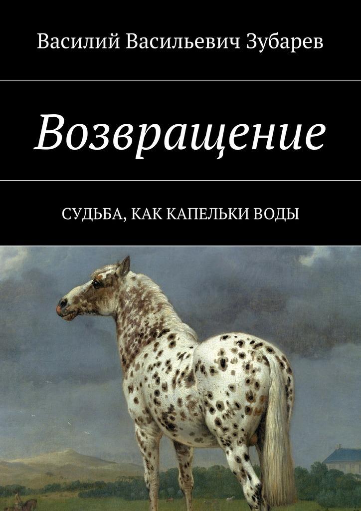 Василий Васильевич Зубарев Возвращение. Судьба, как капельки воды