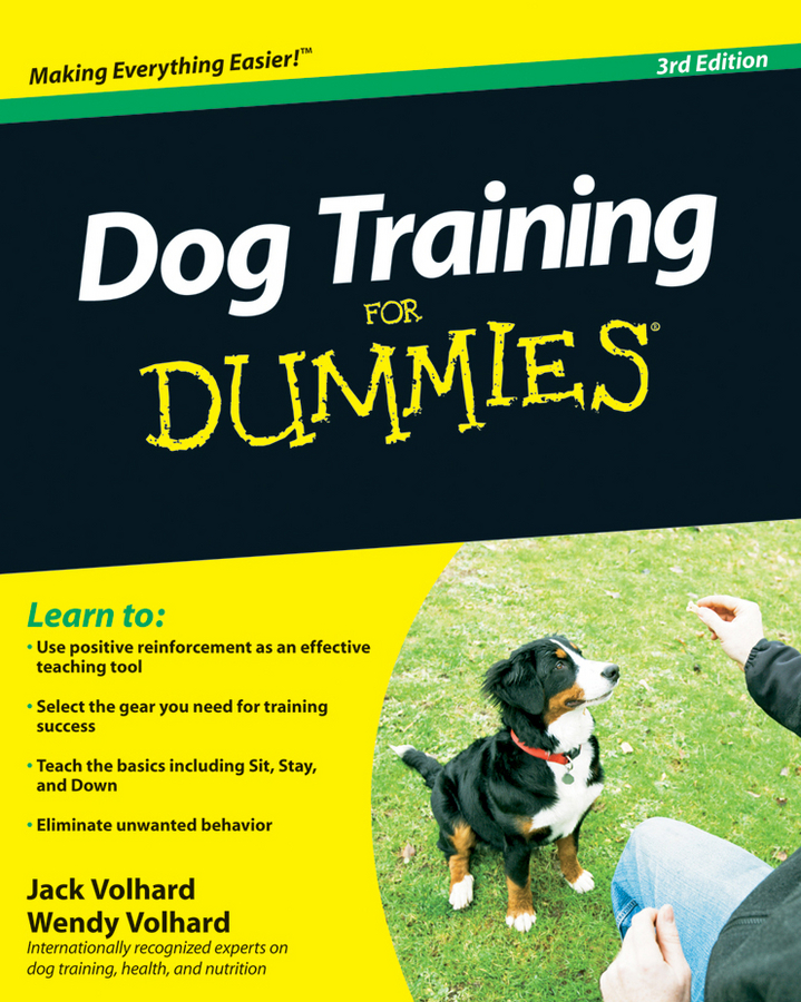 Jack Volhard Dog Training For Dummies maia heyck merlin the together leader get organized for your success and sanity