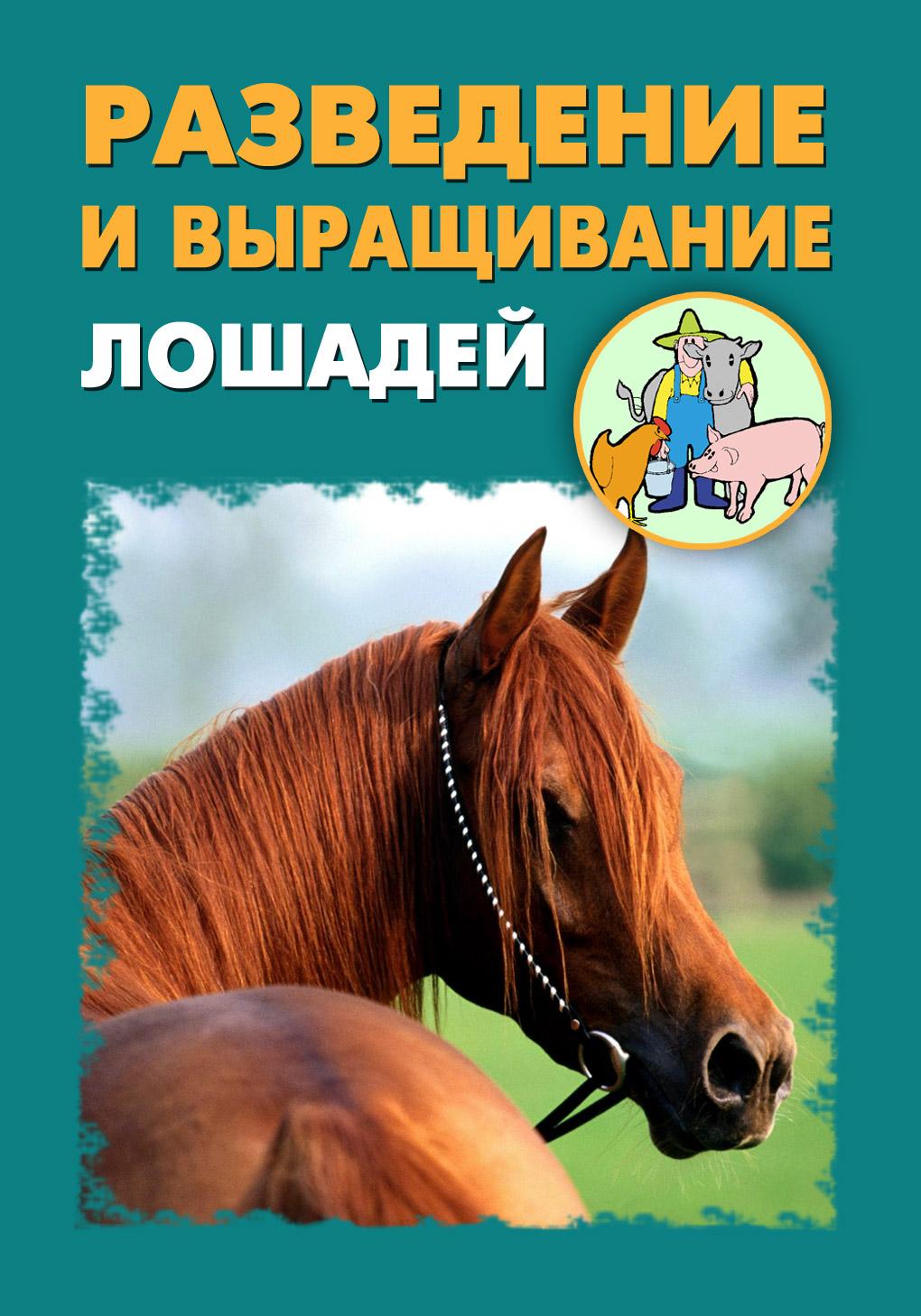 Фото - Илья Мельников Разведение и выращивание лошадей коневодство и коннозаводство россии