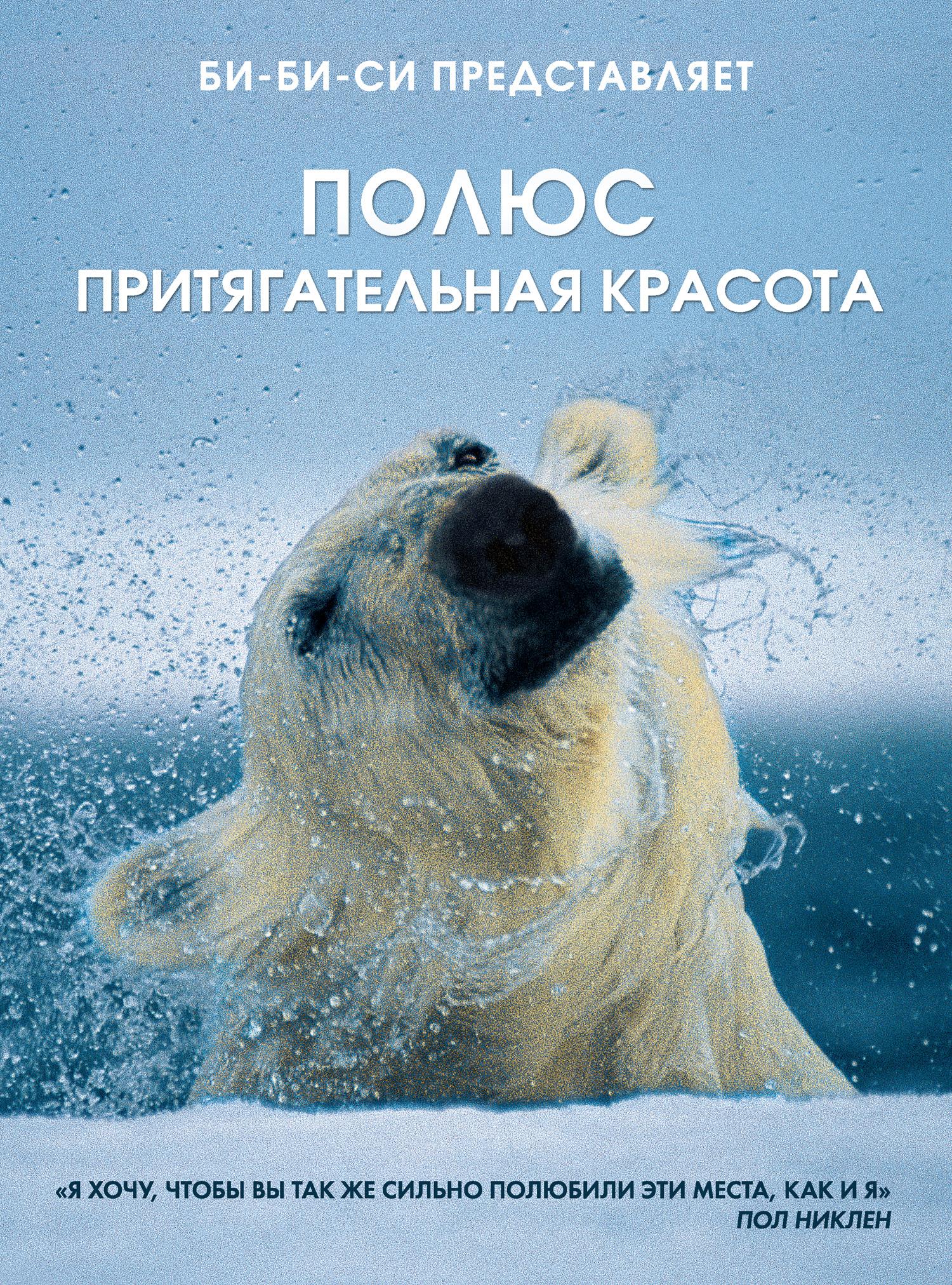 Пол Никлен Полюс. Притягательная красота на северном и южном полюсах пингвиненок