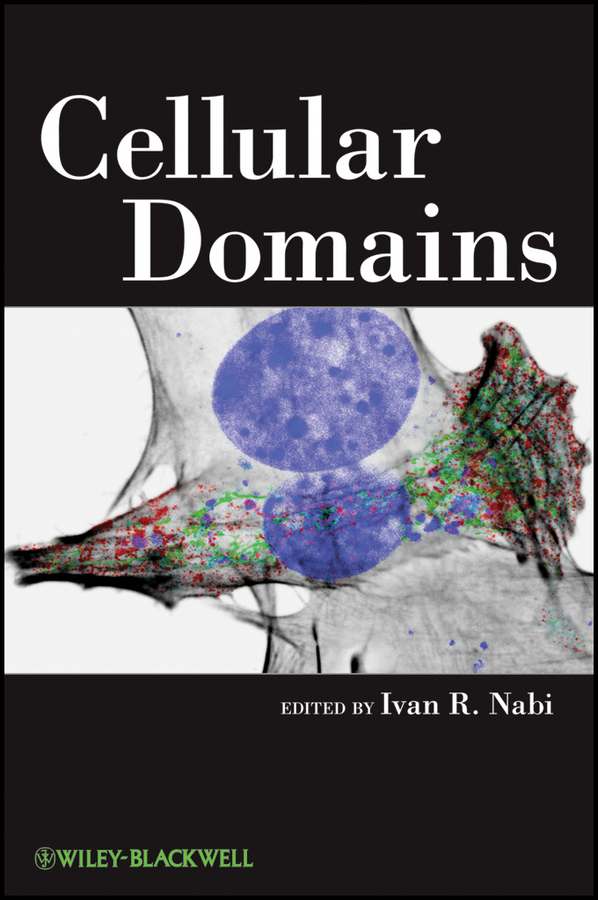 Ivan Nabi R. Cellular Domains цена