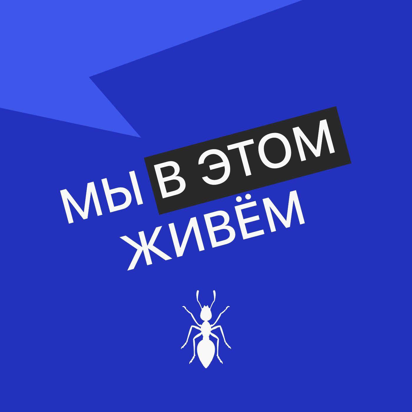 Выпуск № 07 сезон 3  Шавухи и пятихатки