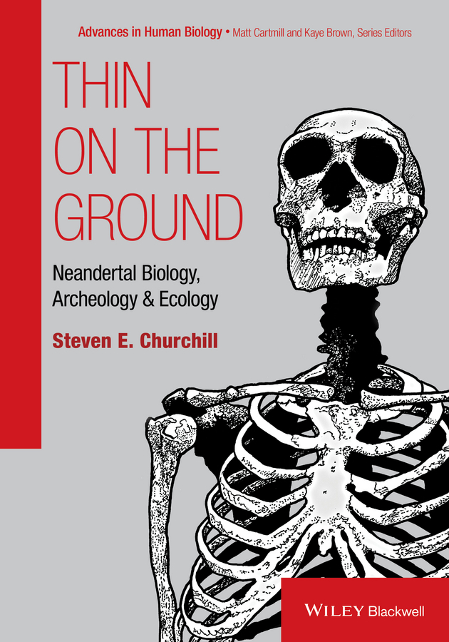 Фото - Steven Churchill E. Thin on the Ground. Neandertal Biology, Archeology and Ecology behavioral ecology of the eastern red backed salamander