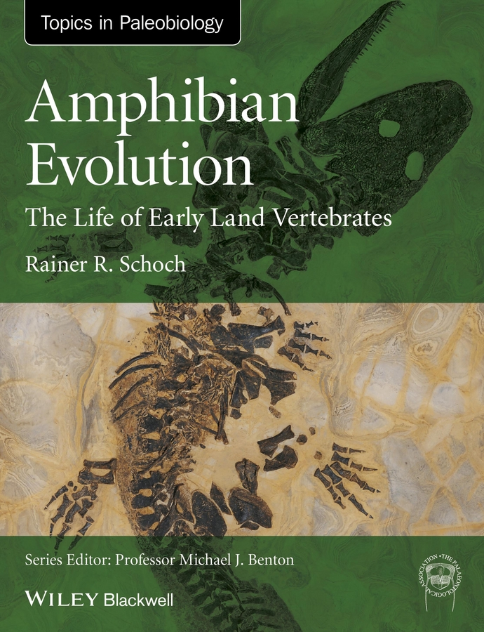 Rainer Schoch R. Amphibian Evolution. The Life of Early Land Vertebrates caravan caravan in the land of grey and pink