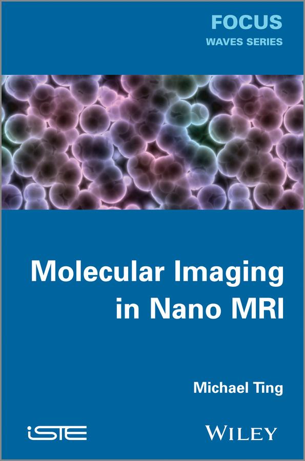 Michael Ting Molecular Imaging in Nano MRI