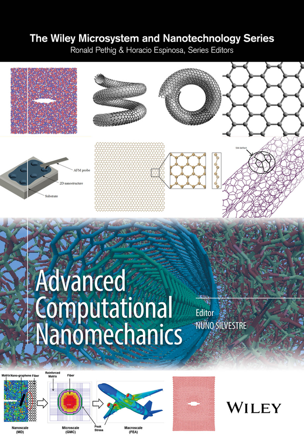 Nuno Silvestre Advanced Computational Nanomechanics цена