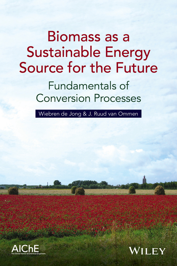 Wiebren Jong de Biomass as a Sustainable Energy Source for the Future. Fundamentals of Conversion Processes