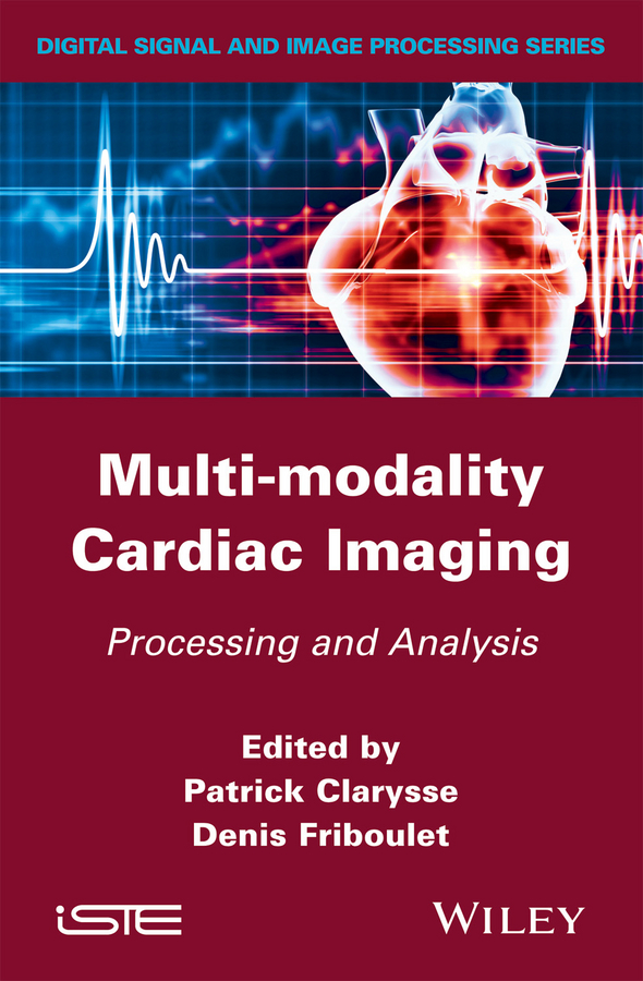 купить Patrick Clarysse Multi-modality Cardiac Imaging. Processing and Analysis дешево