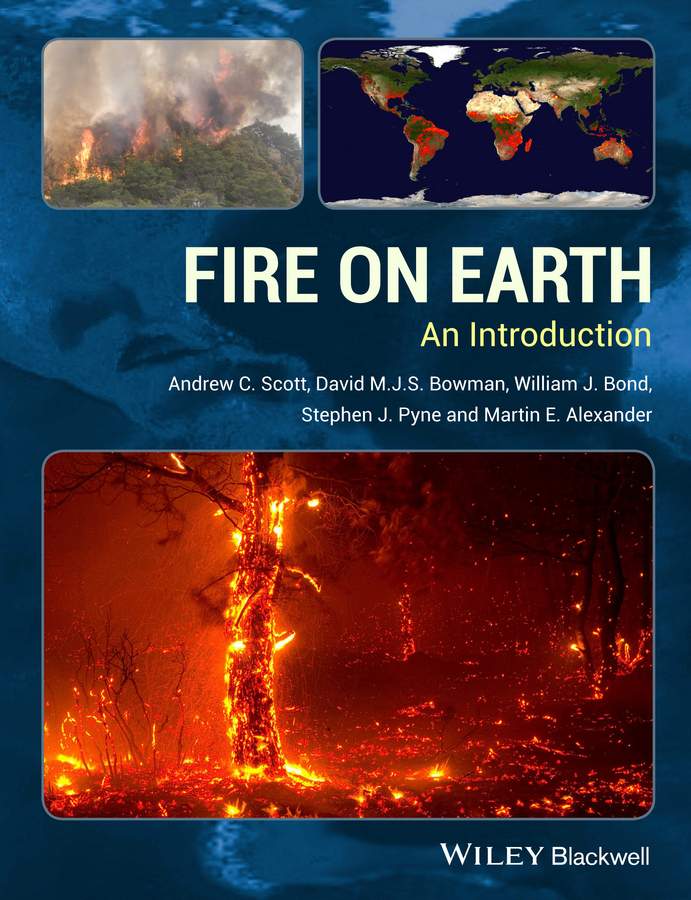 Martin Alexander E. Fire on Earth. An Introduction of a fire on the moon