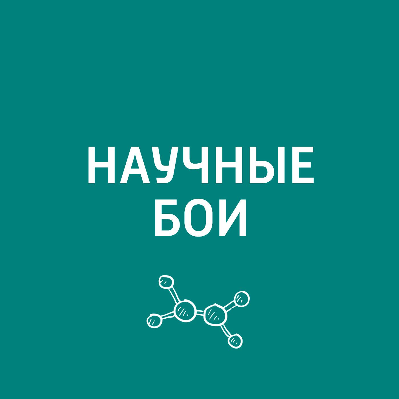 Евгений Стаховский Мозг