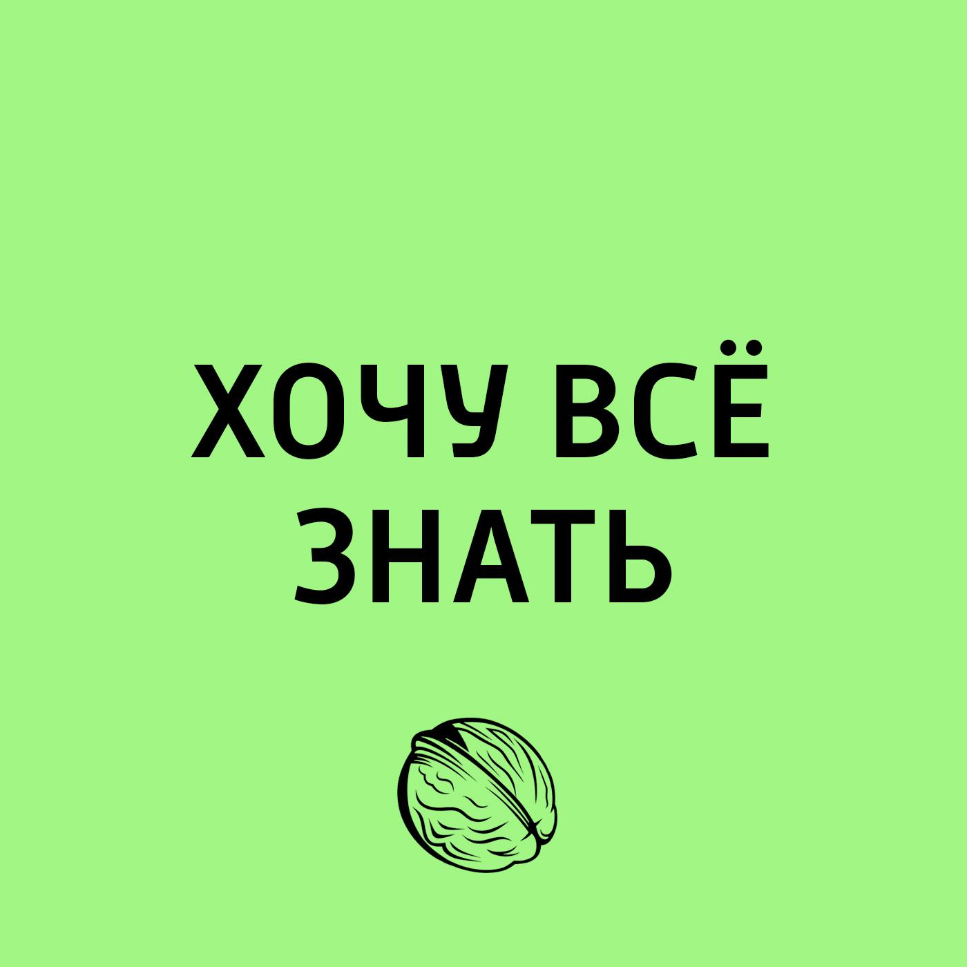 Торческий коллекти программы «Хочу сё знать» Транссиб. Урал