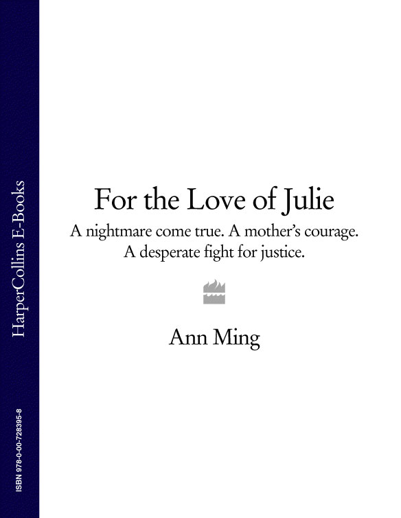 Ann Ming For the Love of Julie: A nightmare come true. A mother's courage. A desperate fight for justice. justice society of america thy kingdom come part 2