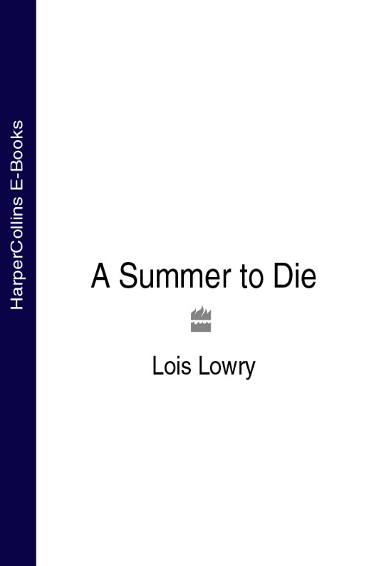 Lois Lowry A Summer to Die meg maguire the wedding fling