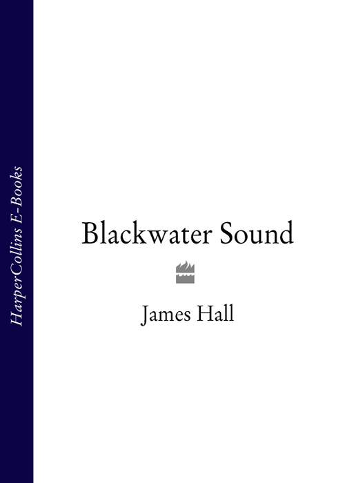 James Hall Blackwater Sound 55 75kw inverter with transformer hall current sensor 4644x052 83