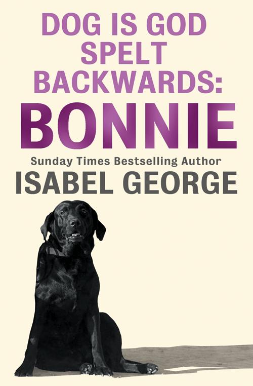 Isabel George DOG Is GOD Spelt Backwards: Bonnie registered service dog metallic patch