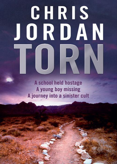 лучшая цена Chris Jordan Torn