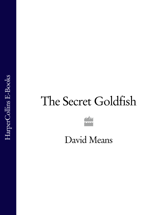 David Means The Secret Goldfish