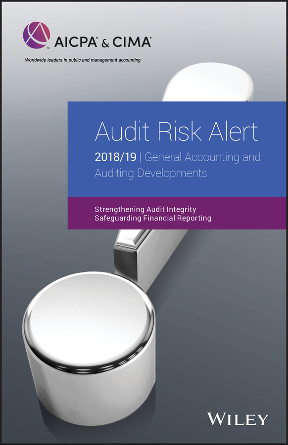 AICPA Audit Risk Alert: General Accounting and Auditing Developments 2018/19 new in stock dt93n14lof