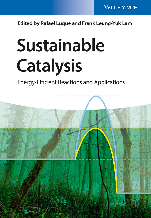 Rafael Luque Sustainable Catalysis. Energy-Efficient Reactions and Applications david farrusseng metal organic frameworks applications from catalysis to gas storage