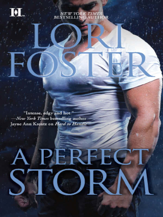 Lori Foster A Perfect Storm borderline americans – racial division and labor war in the arizona borderlands