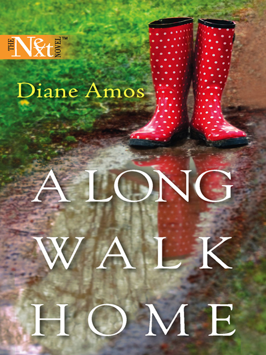 Diane Amos A Long Walk Home