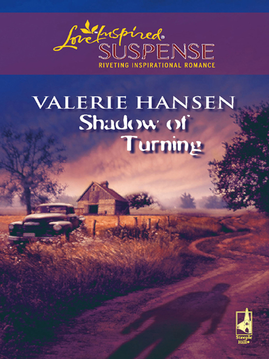 Valerie Hansen Shadow of Turning