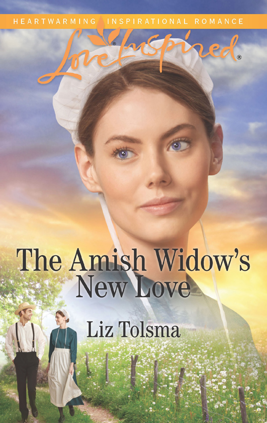 Liz Tolsma The Amish Widow's New Love naomi moir starting and ending lessons