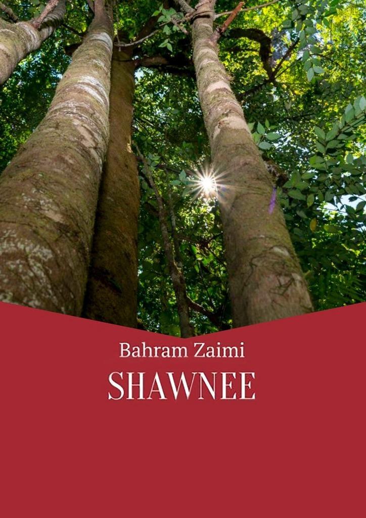 Bahram Zaimi Shawnee цена