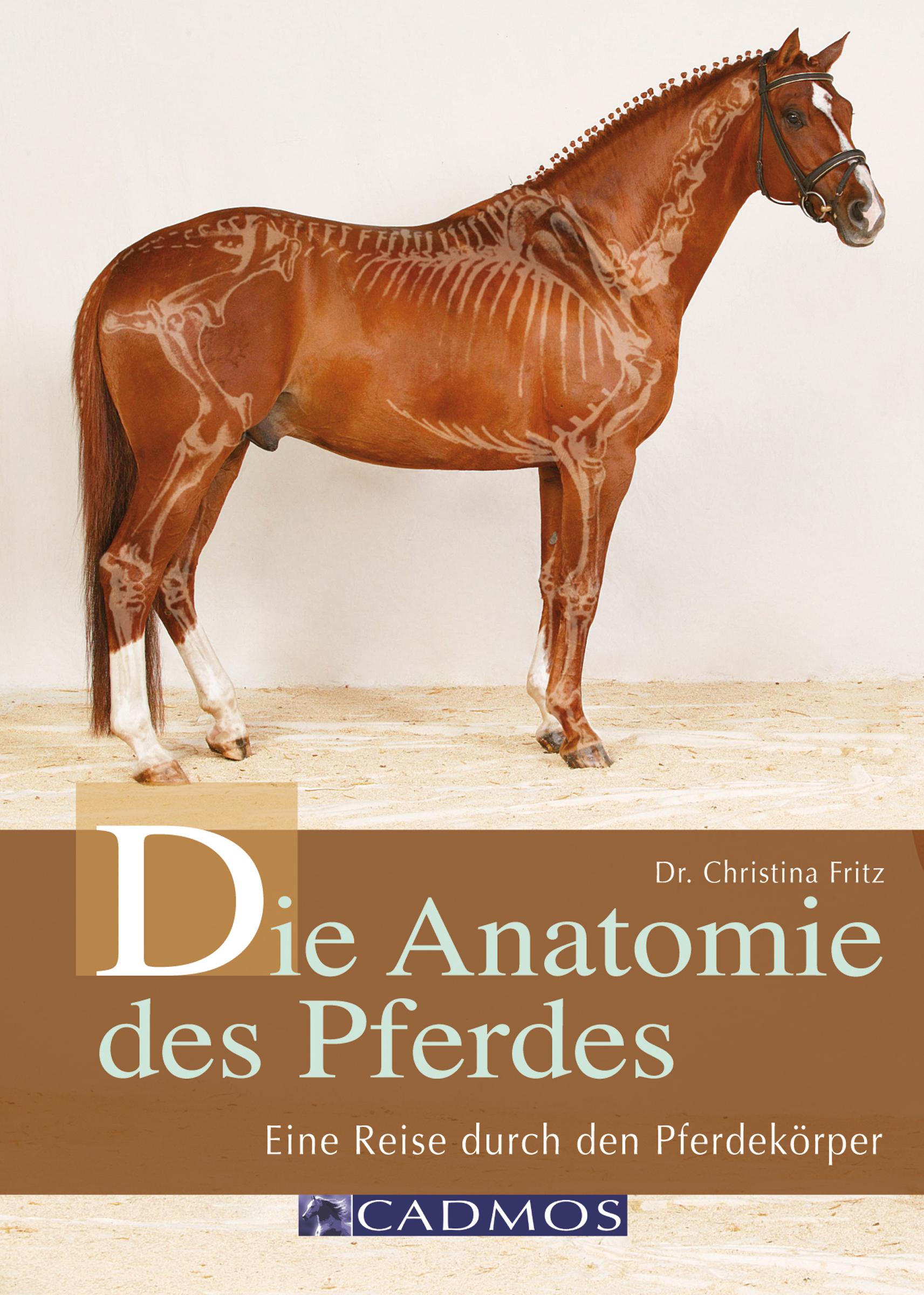 Dr. Christina Fritz Die Anatomie des Pferdes gebhard deissler anatomie und physiologie des quantischen kulturbewusstseins