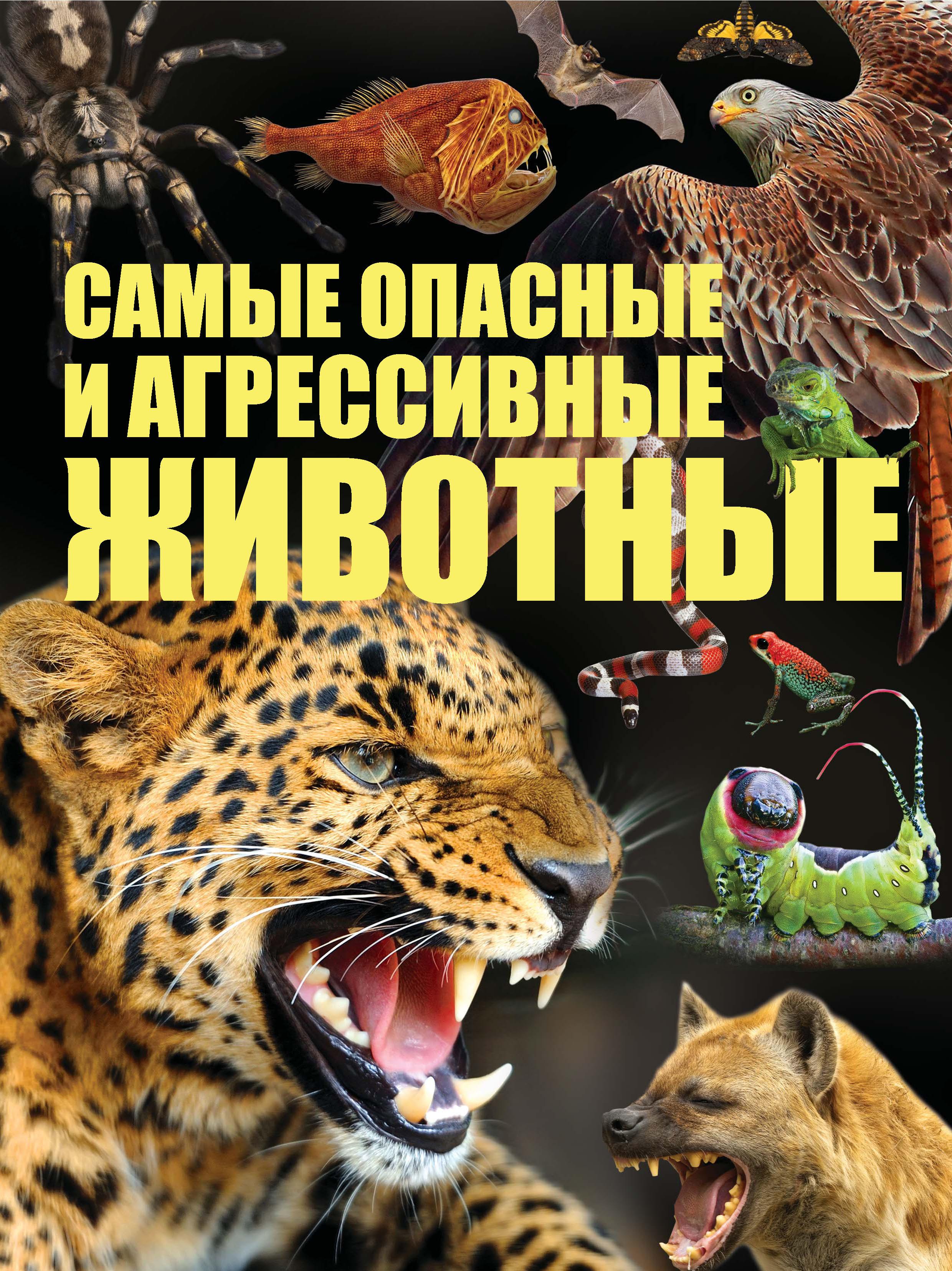 Сергей Цеханский Cамые опасные и агрессивные животные сергей цеханский большая книга почему
