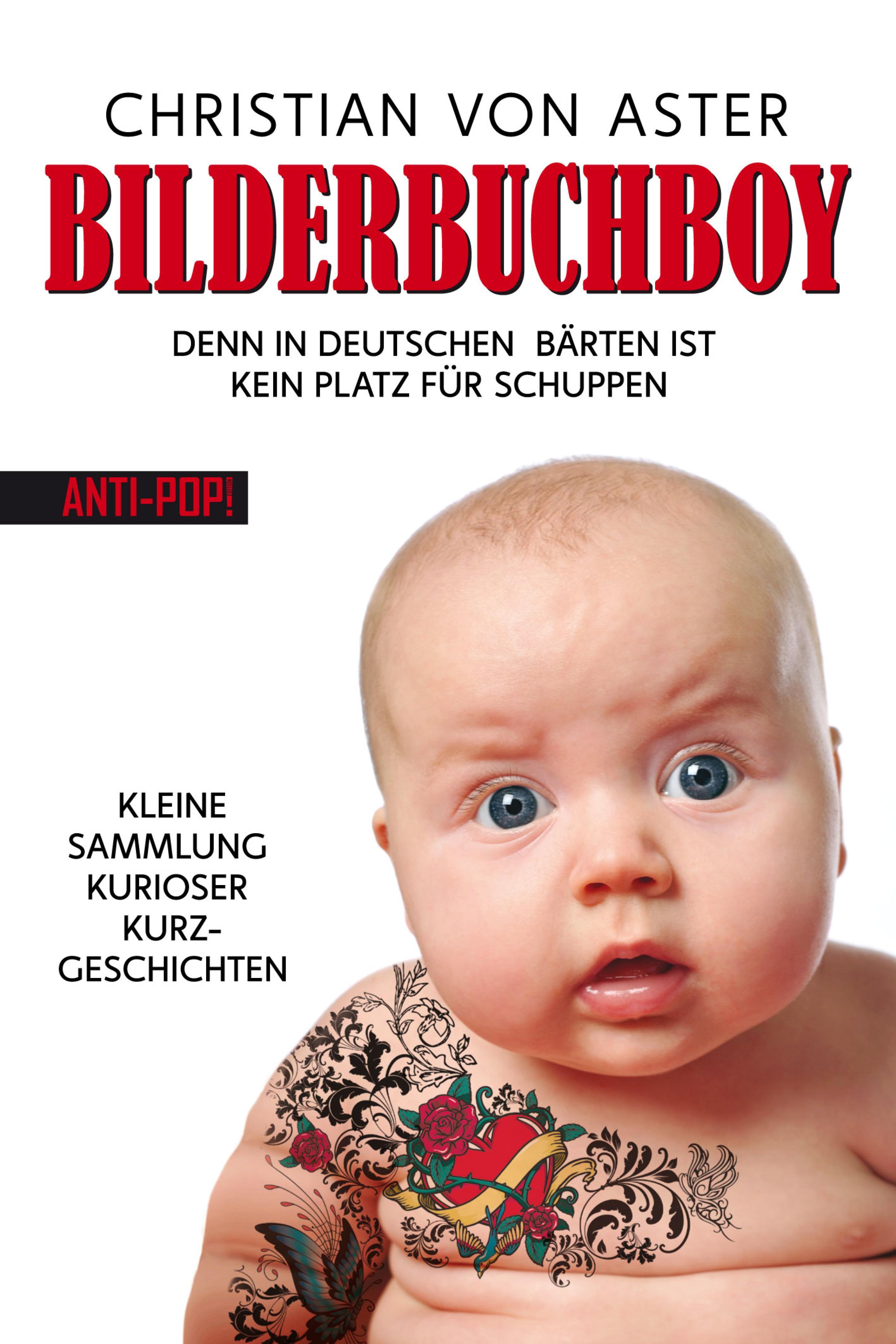 Christian von Aster Bilderbuchboy christian michel einsatz von xml in dokumentenmanagementsystemen
