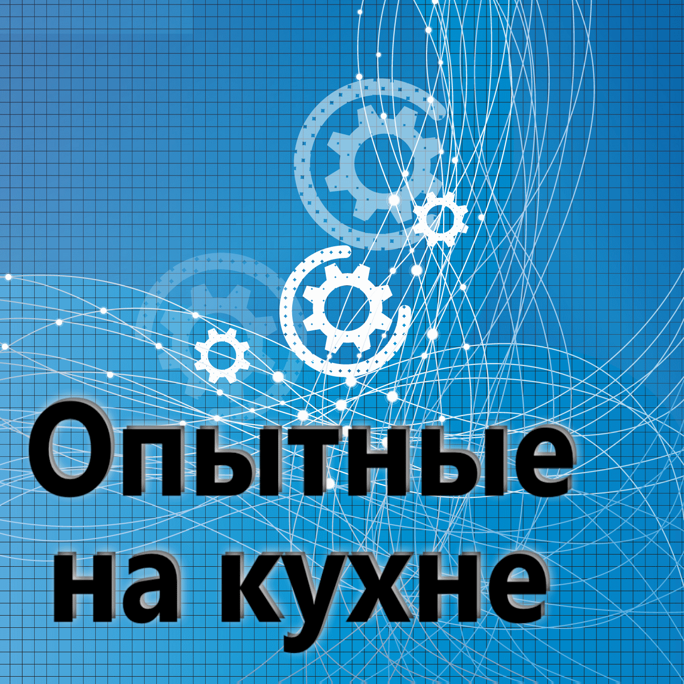 Евгений Плешивцев 140. Опытные на кухне.