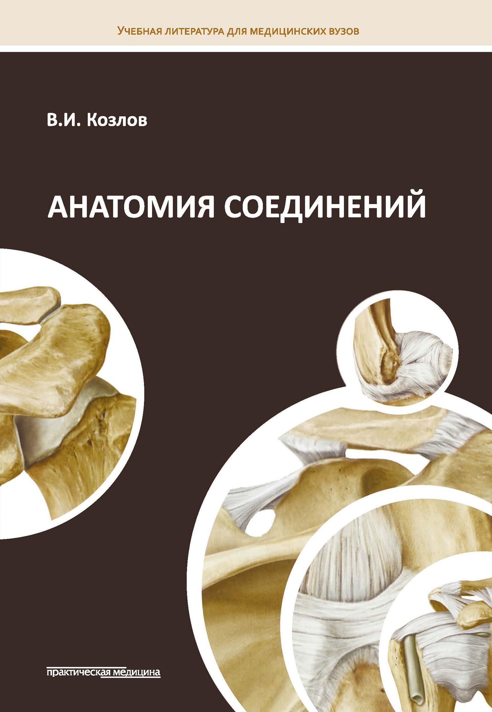 Валентин Козлов Анатомия соединений