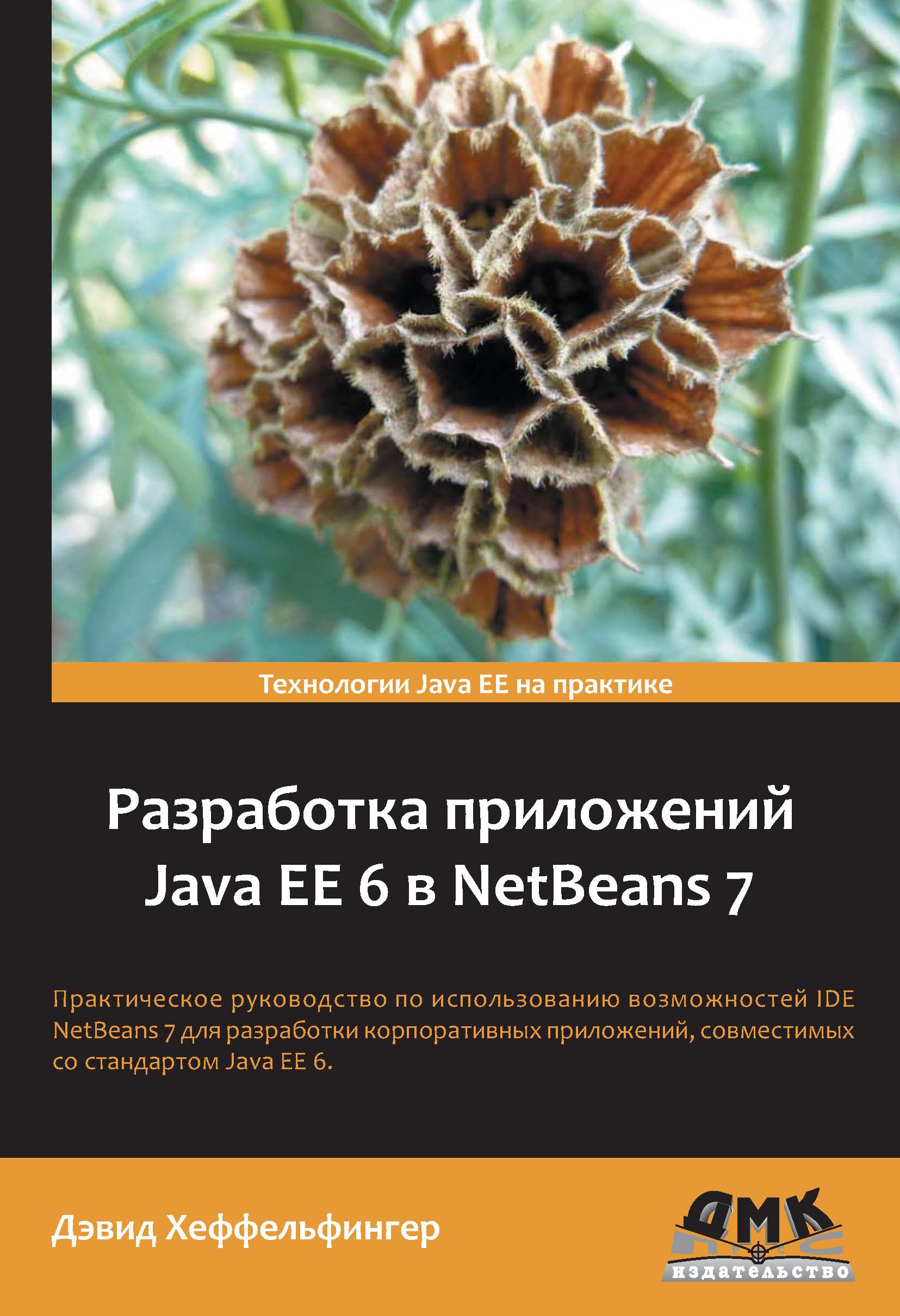 Дэвид Хеффельфингер Разработка приложений Java EE 6 в NetBeans 7 вадим монахов язык программирования java и среда netbeans