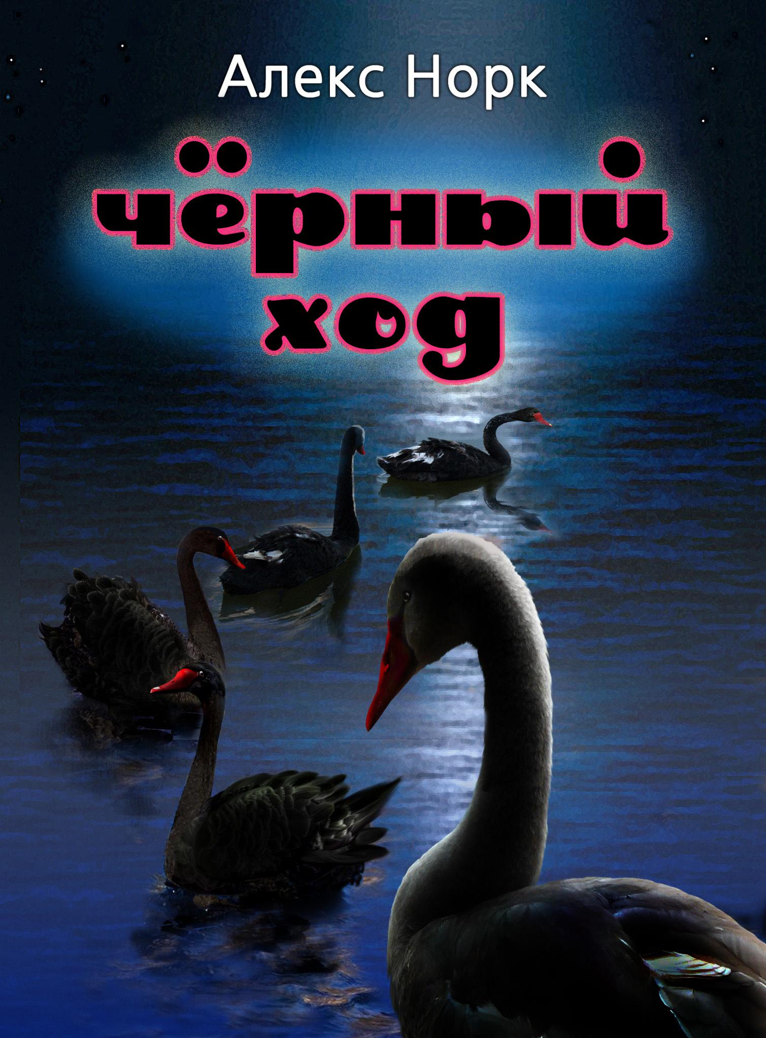 Алекс Норк Черный ход алекс норк черный ход