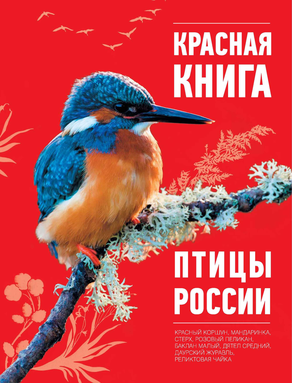 Красная книга. Птицы России