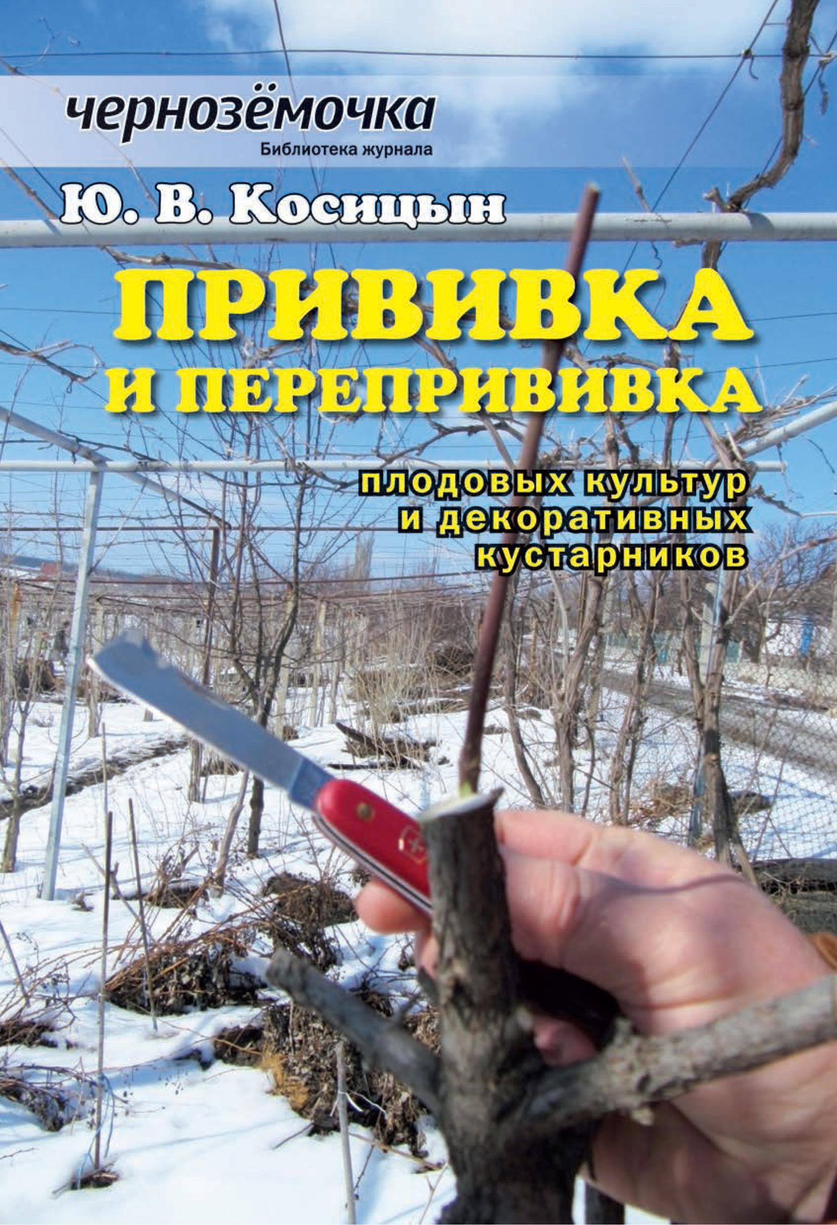 Ю. В. Косицын Прививка и перепрививка плодовых культур и декоративных кустарников
