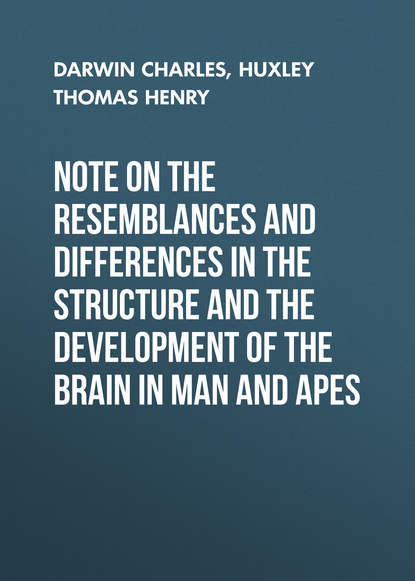 Чарльз Дарвин Note on the Resemblances and Differences in the Structure and the Development of the Brain in Man and Apes чарльз дарвин the descent of man in 2 p part 2 происхождение человека в 2 ч часть 2
