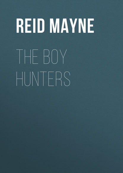 Фото - Майн Рид The Boy Hunters майн рид the hunters feast conversations around the camp fire