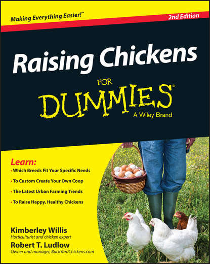 Фото - Kimberly Willis Raising Chickens For Dummies cheryl k smith raising goats for dummies